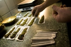 An employee places filter tips in joints containing marijuana at a coffee shop in the southern Dutch city of Bergen op Zoom