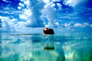 Morgan Maassen 15.1